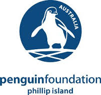 penguin jumper fundation